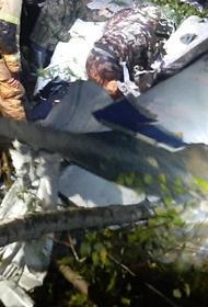 В СК считают возможными причинами крушения самолета L-410 отказ техники или ошибку пилотирования
