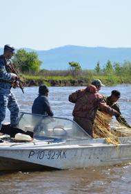 В Хабаровском крае браконьеры отделались условным сроком