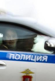 В МВД сообщили о спасении 10-летней девочки от 33-летнего злоумышленника в Ленинградской области