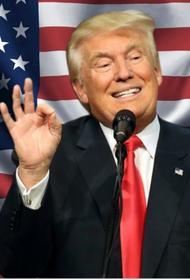 В США готовится книга о последних днях правления Трампа