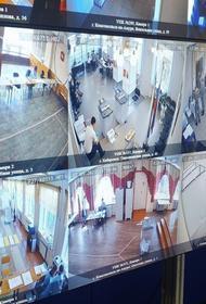 Впервые в Хабаровске начал работу центр общественного наблюдения за голосованием