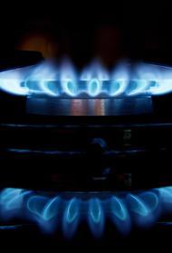 Эксперт Танурков перечислил отрасли в ЕС, которые пострадают от роста цен на газ