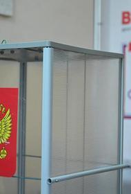 Дистанционное электронное голосование может появиться на Южном Урале