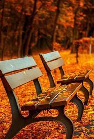 Врач-психотерапевт Владимир Файнзильберг посоветовал двигаться и соблюдать режим дня, чтобы побороть хандру осенью