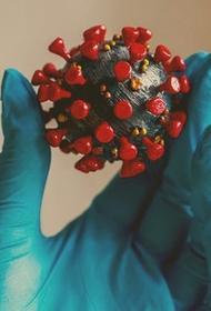 ОРВИ полезнее вакцины от ковида?