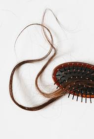 Врач-трихолог Нагайцева заявила, что без помощи специалиста восстановить волосы после COVID-19 очень сложно