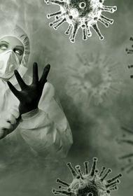 В США смертность от коронавируса бьет рекорды