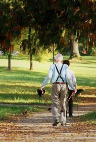 Глава Минтруда сообщил, что в 2022 году страховые пенсии по старости проиндексируют на 5,9 процента