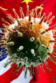 Китай продолжает считать США главным виновником начала коронавирусной эпидемии 