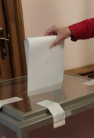 Украинский политолог Яли назвал участие жителей Донбасса в выборах в Госдуму «иллюзией» скорого присоединения ДНР и ЛНР к России