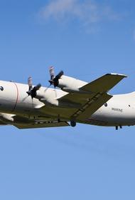 «ПолитРоссия»: истребитель МиГ-31 «вызвал панику» у пилотов самолета НАТО, приблизившегося к границам РФ над Баренцевым морем