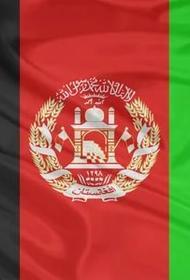 «Талибан»* полностью возвращается к порядкам 90-х