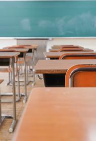 Деструктивное поведение и эмоциональные нарушения: опасных школьников будет выявлять искусственный интеллект?