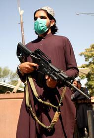 И.о. замглавы сформированного талибами правительства Афганистана Барадар обвинил Таджикистан во вмешательстве в дела республики