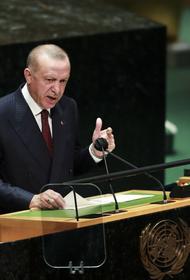 Экс-представитель НАТО в Москве Табах заявил, что президент Эрдоган может объявить Крым турецким