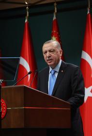 Автор публикации в турецкой газете Milliyet предположил, что визит Эрдогана к Путину завершится «сюрпризом»
