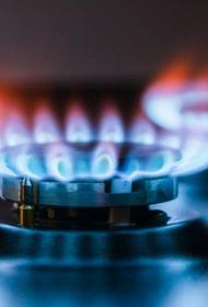 ЕС предлагает установить государственное регулирование цен на газ
