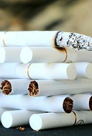 Доктор Алексей Аграновский рассказал, что курильщики менее подвержены заражению СOVID-19