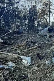 Эксперты оценят ущерб от крушения Ан-26 Большехехцирскому заповеднику