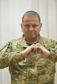 Украинской армии разрешили «причинять смерть врагам»