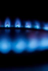 Оператор ГТС Украины сообщил о приостановке «Газпромом» транзита «голубого» топлива в Венгрию через страну