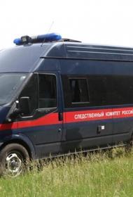В Одинцово задержаны сын и сноха пенсионеров, обнаруженных мертвыми