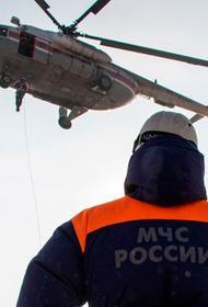 Сотрудники полиции нашли паспорта погибших при крушении вертолета в Подмосковье