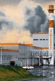Рязанские экологи обратились к Светлане Радионовой с просьбой приостановить работу завода «Техно»