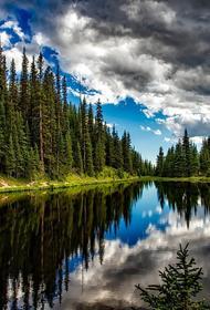В Госдуму внесён законопроект о приватизации земель у водоёмов