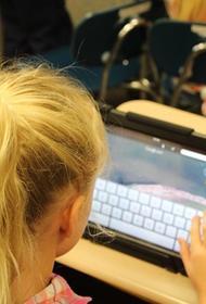 Сенатор Рязанский поддержал идею создания отечественной операционной системы для детей