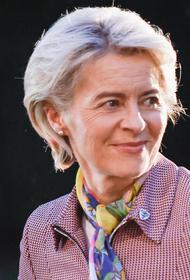 Глава Еврокомиссии фон дер Ляйен заявила, что для ЕС важны инвестиции в возобновляемую энергетику