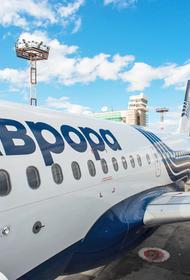 Из Владивостока в Советскую Гавань теперь можно отправиться самолётом