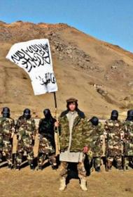Avia.pro считает, что Россия может нанести удары по территории Афганистана, посмотрим, как дела обстоят на самом деле