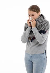 Independent: грядущей зимой в Великобритании могут зафиксировать до 60 000 смертей жителей от гриппа