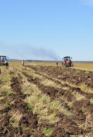 Ущерб от паводка сельскому хозяйству Хабаровского края оценили в 24 млн рублей