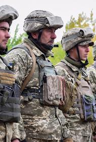 Полковник ВСУ Жданов назвал возможное появление военной учебной миссии Евросоюза на Украине «ударом в спину» России