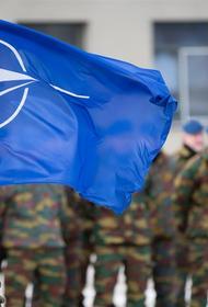 Портал Soha предсказал возможный распад НАТО в случае безъядерной войны с Россией
