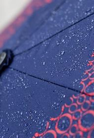 Синоптик Леус сообщил, что дожди придут в столичный регион 13 октября