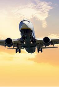 Из-за одного предмета у попутчика пассажирка самолета настояла на экстренной посадке