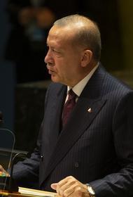 Ресурс Avia.pro: ВКС России нанесли десятки ударов в южном Идлибе после отказа Эрдогана вывести турецкие войска из Сирии