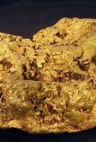 Ученые научились выявлять золото с помощью рентгеновского облучения