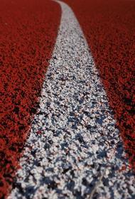 В Росавтодоре сообщили о состоянии трассы Адлер — Красная Поляна, где в ДТП попала машина с Ксенией Собчак