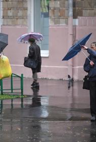 В Москве за минувшие сутки выпало 32% месячной нормы осадков