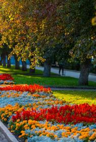 В 2021 году на социальные проекты НКО Челябинская область направила 199 миллионов рублей