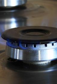 Новак: Украина приняла решение платить за российский газ на 20-30% дороже