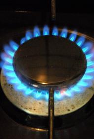 Президент Сербии: Белград не устраивает предложенная Россией цена на газ