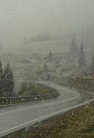 Метеоролог Макарова сообщила о первом снеге в Московском регионе 19 октября