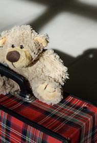 В России 17 октября вступили в силу обновленные правила вывоза детей за рубеж