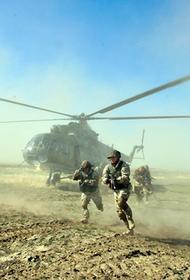 Десантники России и Египта приступили к тактическим учениям «Защитники дружбы-21»