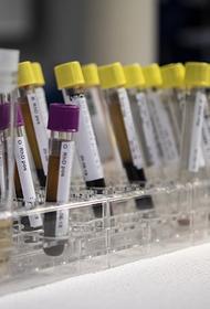 В России зарегистрирован максимум случаев заражения коронавирусом с начала пандемии – 34 303